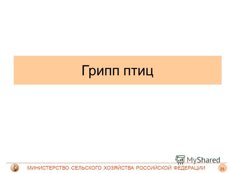МИНИСТЕРСТВО СЕЛЬСКОГО ХОЗЯЙСТВА РОССИЙСКОЙ ФЕДЕРАЦИИ Грипп птиц 26
