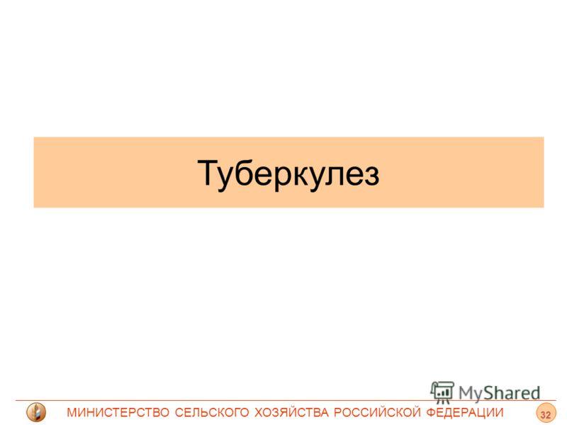 МИНИСТЕРСТВО СЕЛЬСКОГО ХОЗЯЙСТВА РОССИЙСКОЙ ФЕДЕРАЦИИ Туберкулез 32