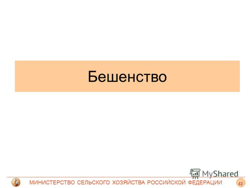 МИНИСТЕРСТВО СЕЛЬСКОГО ХОЗЯЙСТВА РОССИЙСКОЙ ФЕДЕРАЦИИ Бешенство 42