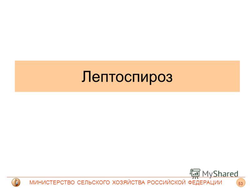 МИНИСТЕРСТВО СЕЛЬСКОГО ХОЗЯЙСТВА РОССИЙСКОЙ ФЕДЕРАЦИИ Лептоспироз 53