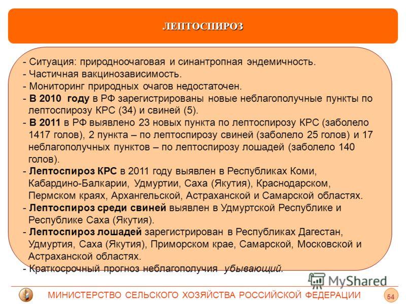 МИНИСТЕРСТВО СЕЛЬСКОГО ХОЗЯЙСТВА РОССИЙСКОЙ ФЕДЕРАЦИИ ЛЕПТОСПИРОЗ - Ситуация: природноочаговая и синантропная эндемичность. - Частичная вакцинозависимость. - Мониторинг природных очагов недостаточен. - - В 2010 году в РФ зарегистрированы новые неблаг