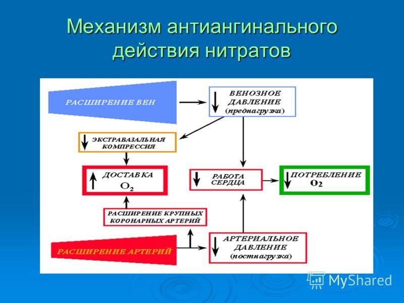 Механизм антиангинального действия нитратов