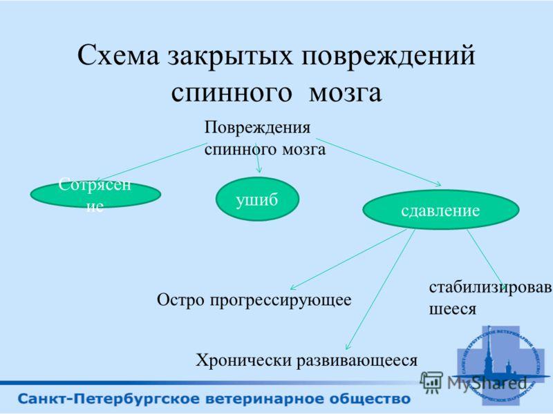 Среди травматических повреждений самого спинного мозга различают следующие клинические формы: сотрясение; ушиб; размозжение с частичным нарушением анатомической целостности или с перерывом спинного мозга; гематомиелию; эпидуральное, субдуральное и су
