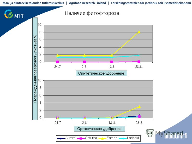 Наличие фитофтороза Синтетическое удобрение Органическое удобрение Поврежденная поверхность листьев %