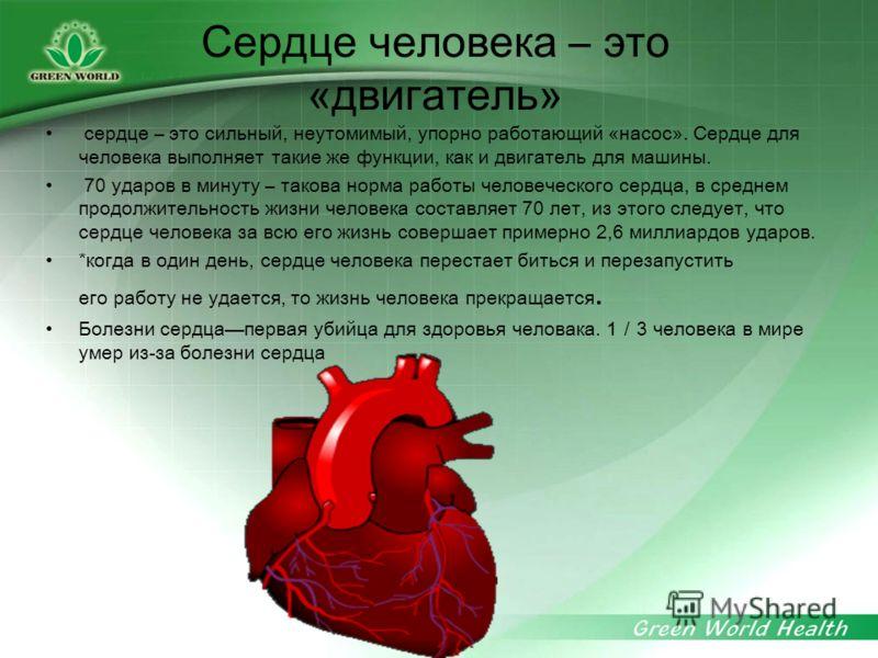 Сердце человека – это «двигатель» сердце – это сильный, неутомимый, упорно работающий «насос». Сердце для человека выполняет такие же функции, как и двигатель для машины. 70 ударов в минуту – такова норма работы человеческого сердца, в среднем продол