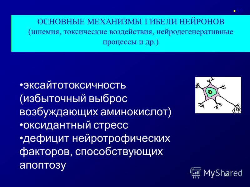 39 ОСНОВНЫЕ МЕХАНИЗМЫ ГИБЕЛИ НЕЙРОНОВ (ишемия, токсические воздействия, нейродегенеративные процессы и др.) 39 эксайтотоксичность (избыточный выброс возбуждающих аминокислот) оксидантный стресс дефицит нейротрофических факторов, способствующих апопто