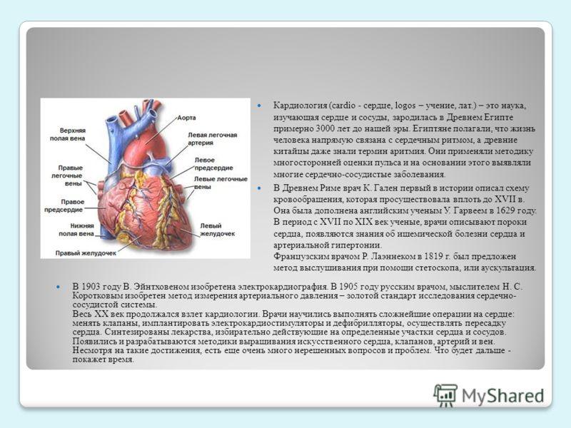 Кардиология (cardio - сердце, logos – учение, лат.) – это наука, изучающая сердце и сосуды, зародилась в Древнем Египте примерно 3000 лет до нашей эры. Египтяне полагали, что жизнь человека напрямую связана с сердечным ритмом, а древние китайцы даже