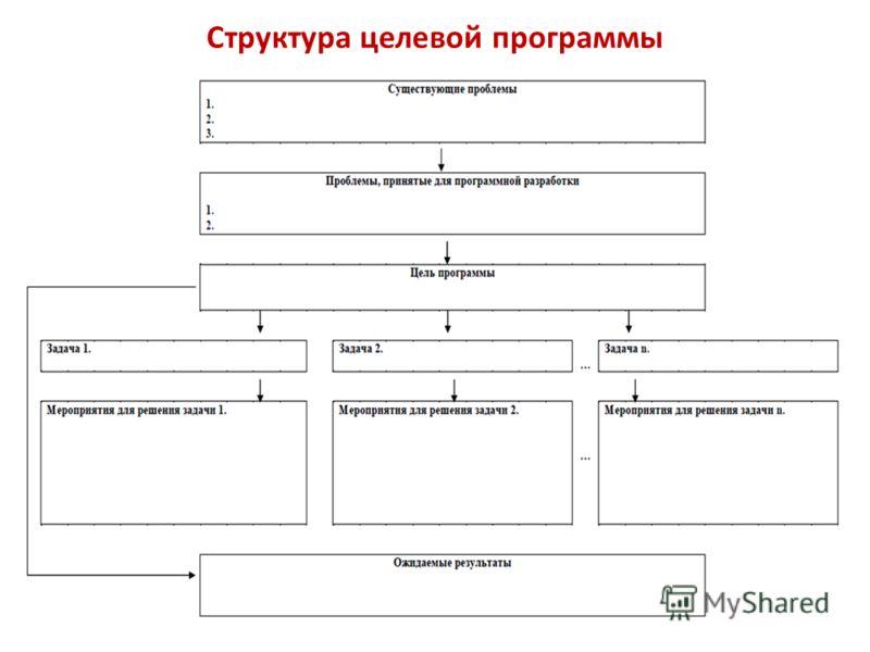 Структура целевой программы