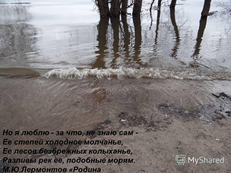 Но я люблю - за что, не знаю сам - Ее степей холодное молчанье, Ее лесов безбрежных колыханье, Разливы рек ее, подобные морям. М.Ю.Лермонтов «Родина
