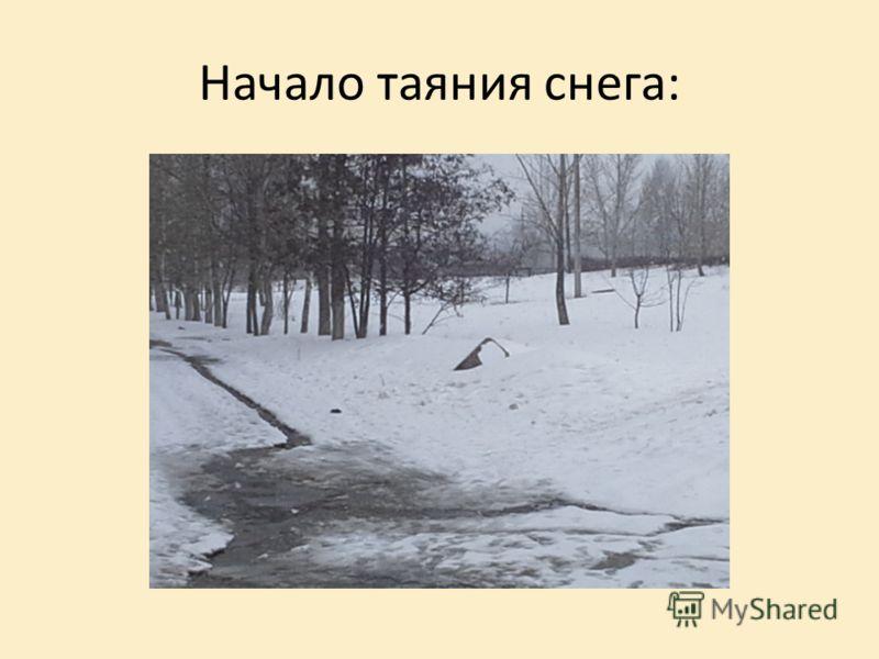 Начало таяния снега:
