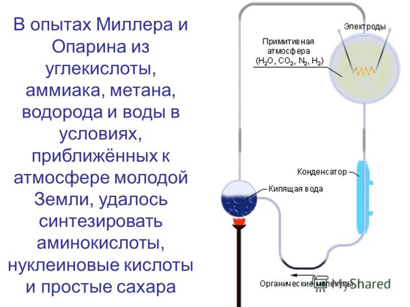 В опытах Миллера и Опарина из углекислоты, аммиака, метана, водорода и воды в условиях, приближённых к атмосфере молодой Земли, удалось синтезировать аминокислоты, нуклеиновые кислоты и простые сахара