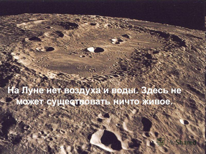 На Луне нет воздуха и воды. Здесь не может существовать ничто живое.