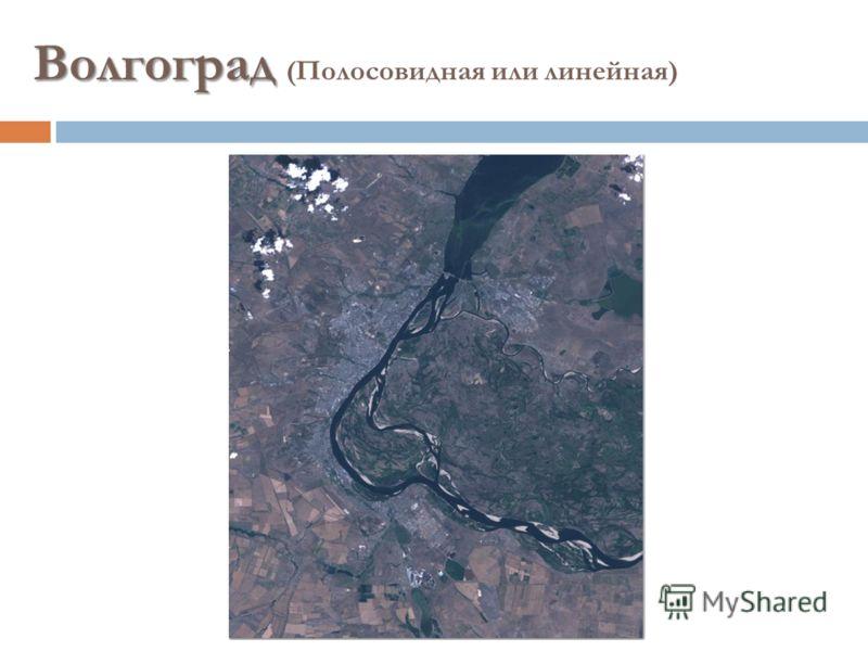 Волгоград Волгоград (Полосовидная или линейная)