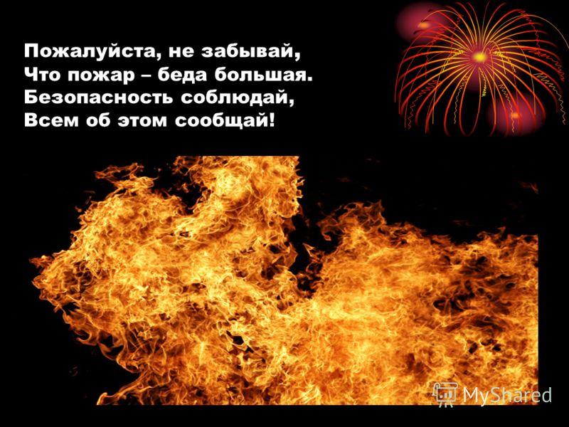 Пожалуйста, не забывай, Что пожар – беда большая. Безопасность соблюдай, Всем об этом сообщай!