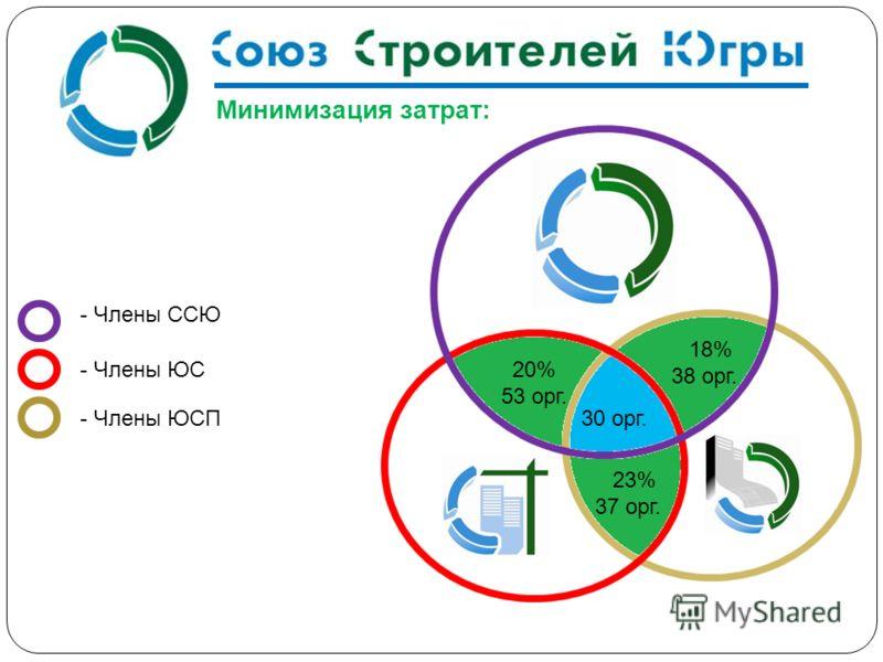 - Члены ССЮ - Члены ЮС - Члены ЮСП 20% 53 орг. 18% 38 орг. 23% 37 орг. 30 орг. Минимизация затрат: