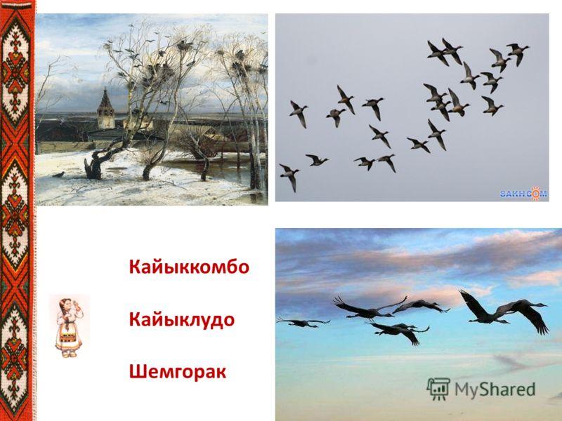Кайыккомбо Кайыклудо Шемгорак
