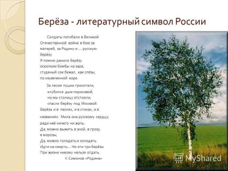 Берёза - литературный символ России Солдаты погибали в Великой Отечественной войне в бою за матерей, за Родину и … русскую берёзу. Я помню ранило берёзу осколком бомбы на заре, студеный сок бежал, как слёзы, по изувеченной коре. За лесом пушки грохот