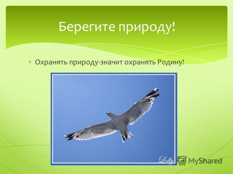 Охранять природу-значит охранять Родину! Берегите природу!
