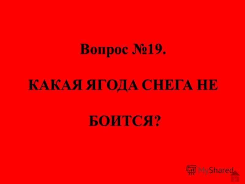 Вопрос 18. КОГДА ЧЁРЕН-ТРУСЛИВ И ЗАДОРЕН, А ПОКРАСНЕЕТ-ТОТЧАС ПРИСМИРЕЕТ.
