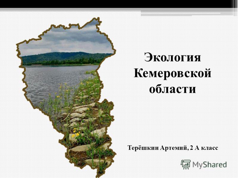Экология Кемеровской области Терёшкин Артемий, 2 А класс