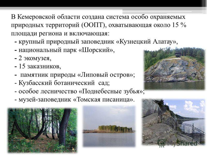 В Кемеровской области создана система особо охраняемых природных территорий (ООПТ), охватывающая около 15 % площади региона и включающая: - крупный природный заповедник «Кузнецкий Алатау», - национальный парк «Шорский», - 2 экомузея, - 15 заказников,