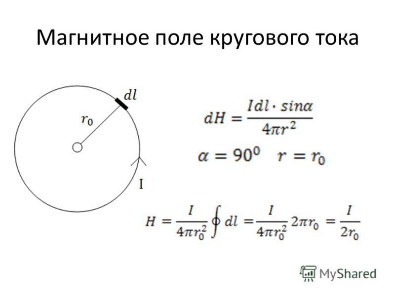 Магнитное поле кругового тока