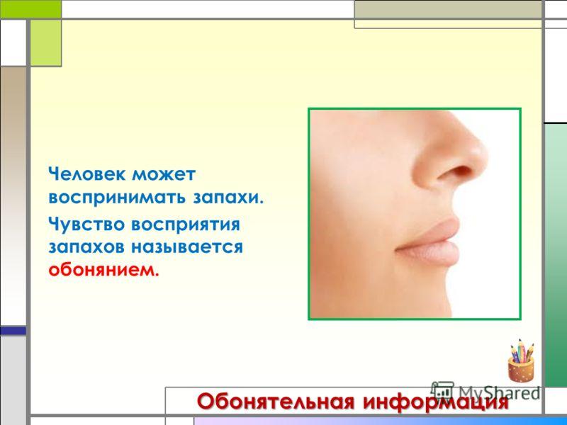 Обонятельная информация Человек может воспринимать запахи. Чувство восприятия запахов называется обонянием.