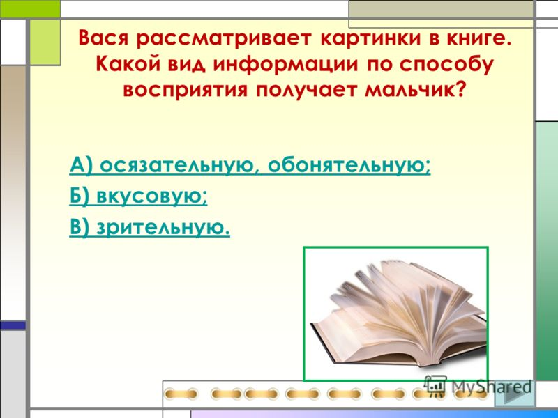 Вася рассматривает картинки в книге. Какой вид информации по способу восприятия получает мальчик? А) осязательную, обонятельную; Б) вкусовую; В) зрительную.