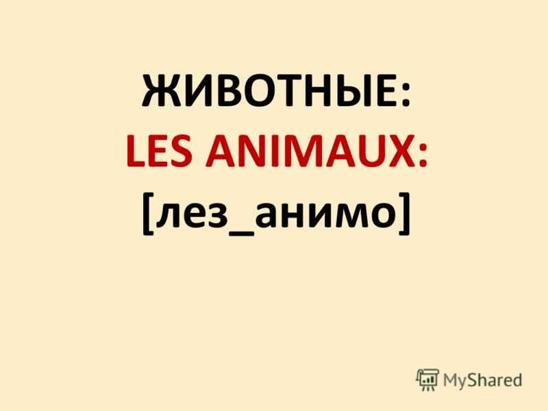 ЖИВОТНЫЕ: LES ANIMAUX: [лез_анимо]
