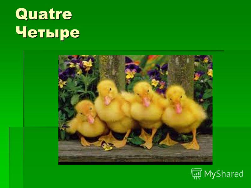 Quatre Четыре