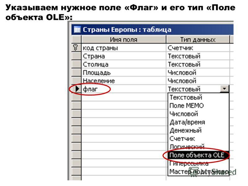 Указываем нужное поле «Флаг» и его тип «Поле объекта OLE»: