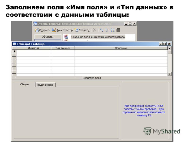 Заполняем поля «Имя поля» и «Тип данных» в соответствии с данными таблицы:
