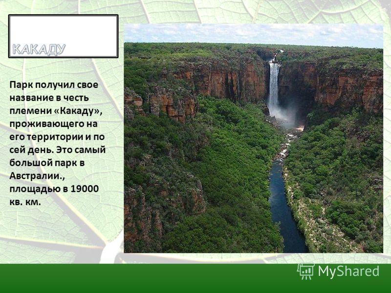 Парк получил свое название в честь племени «Какаду», проживающего на его территории и по сей день. Это самый большой парк в Австралии., площадью в 19000 кв. км.