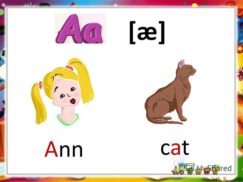 [æ] Ann catcat