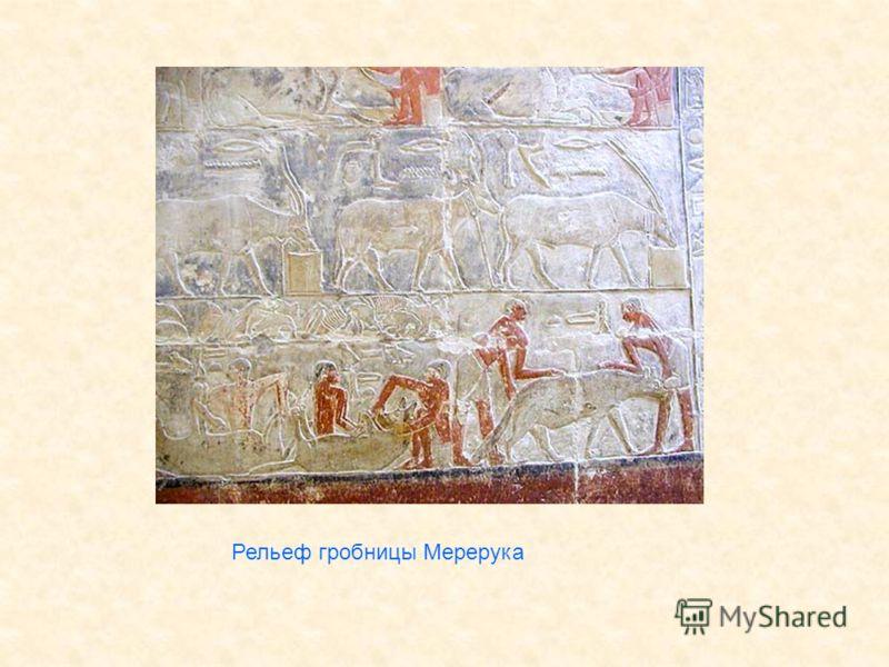 Рельеф гробницы Мерерука