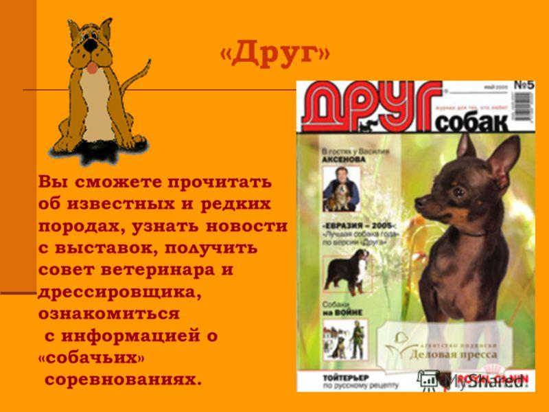 «Друг» Вы сможете прочитать об известных и редких породах, узнать новости с выставок, получить совет ветеринара и дрессировщика, ознакомиться с информацией о «собачьих» соревнованиях.