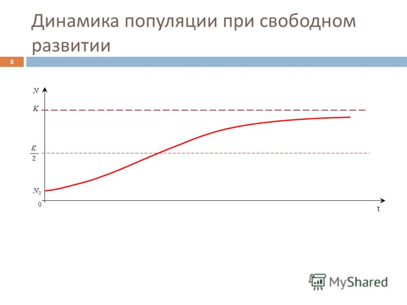 Динамика популяции при свободном развитии 3 0 t N K N0N0
