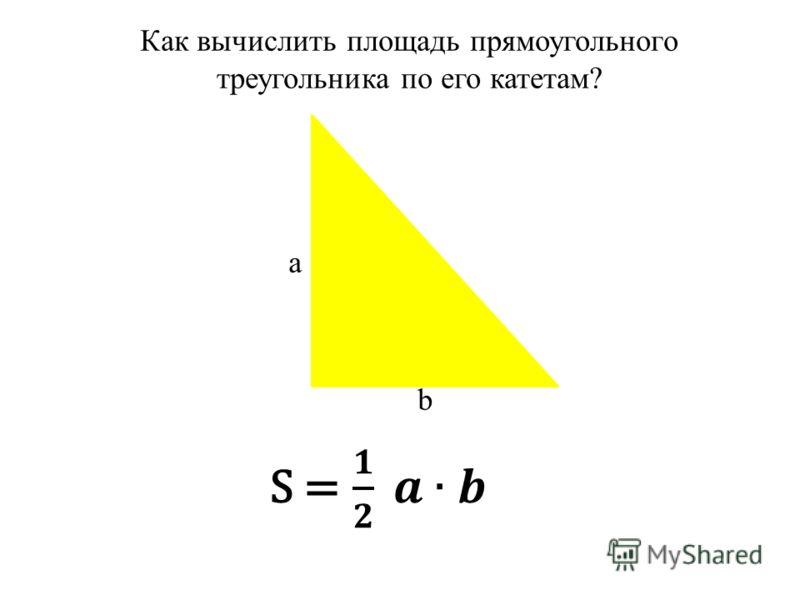 Как вычислить площадь прямоугольного треугольника по его катетам? a b