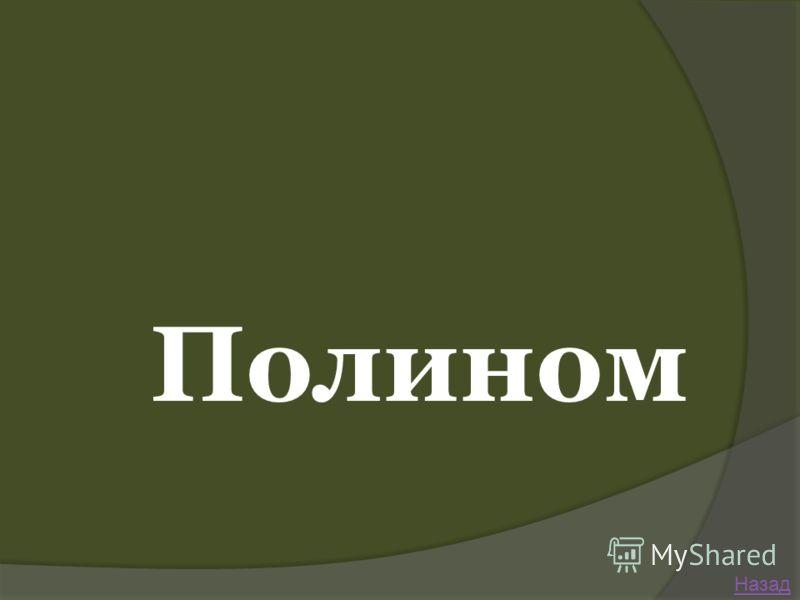 Полином Назад