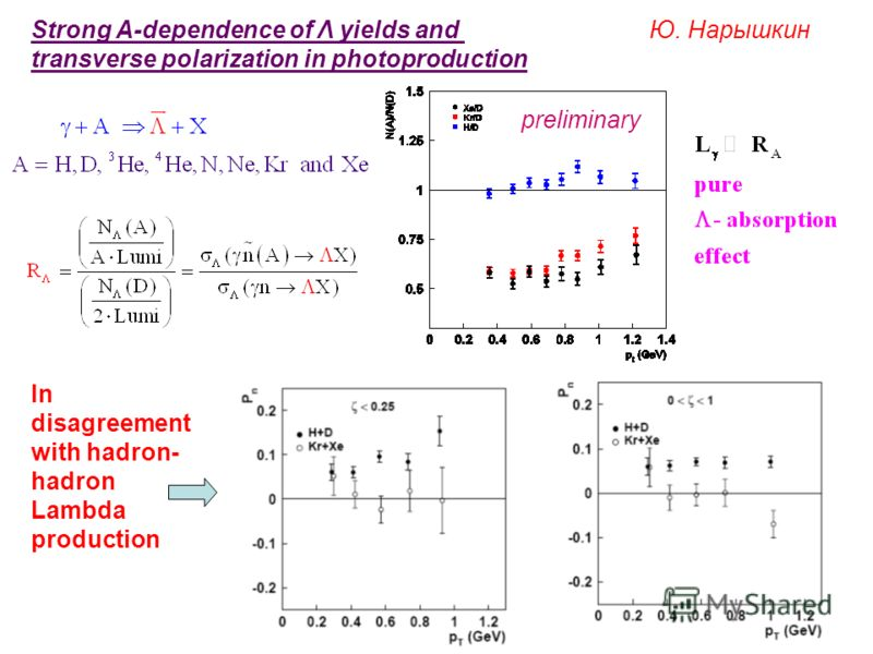 Strong A-dependence of Λ yields and transverse polarization in photoproduction Ю. Нарышкин preliminary In disagreement with hadron- hadron Lambda production