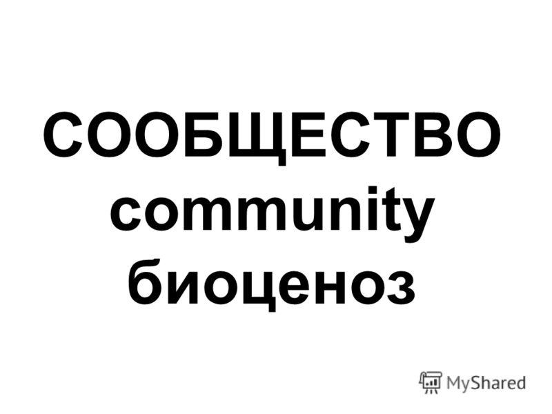СООБЩЕСТВО community биоценоз