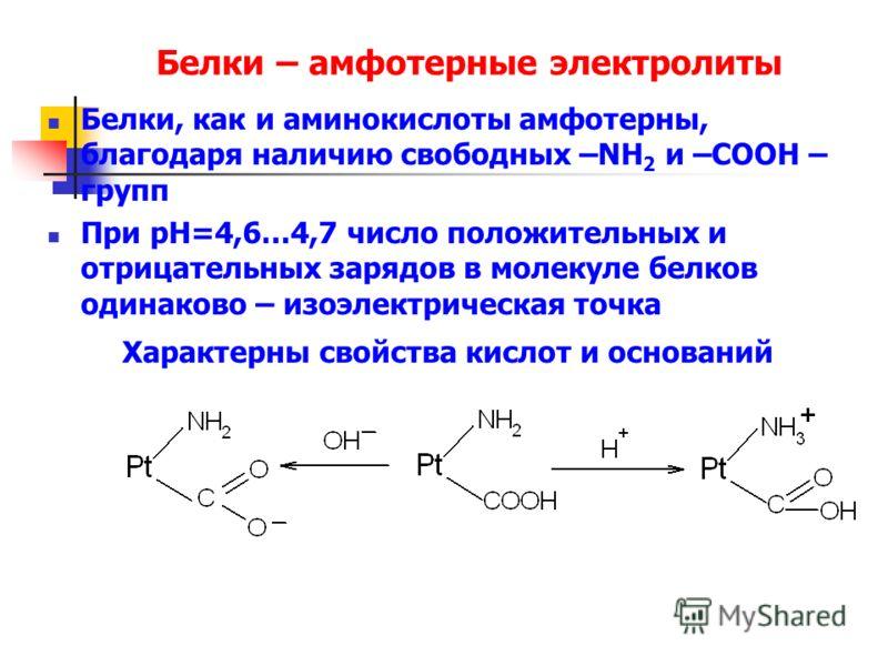 Белки – амфотерные электролиты Белки, как и аминокислоты амфотерны, благодаря наличию свободных –NH 2 и –СООН – групп При рН=4,6…4,7 число положительных и отрицательных зарядов в молекуле белков одинаково – изоэлектрическая точка Характерны свойства