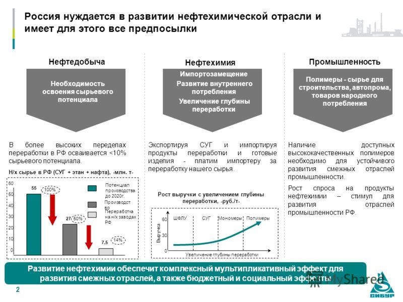 2 Россия нуждается в развитии нефтехимической отрасли и имеет для этого все предпосылки Нефтедобыча В более высоких переделах переработки в РФ осваивается