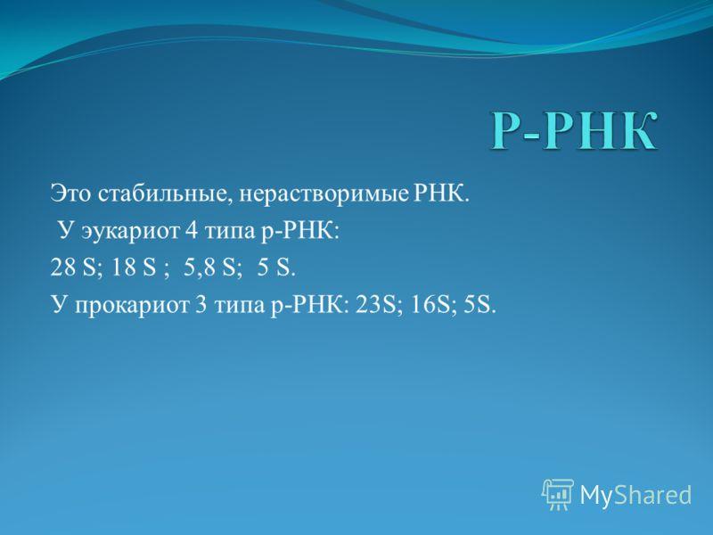 Это стабильные, нерастворимые РНК. У эукариот 4 типа р-РНК: 28 S; 18 S ; 5,8 S; 5 S. У прокариот 3 типа р-РНК: 23S; 16S; 5S.