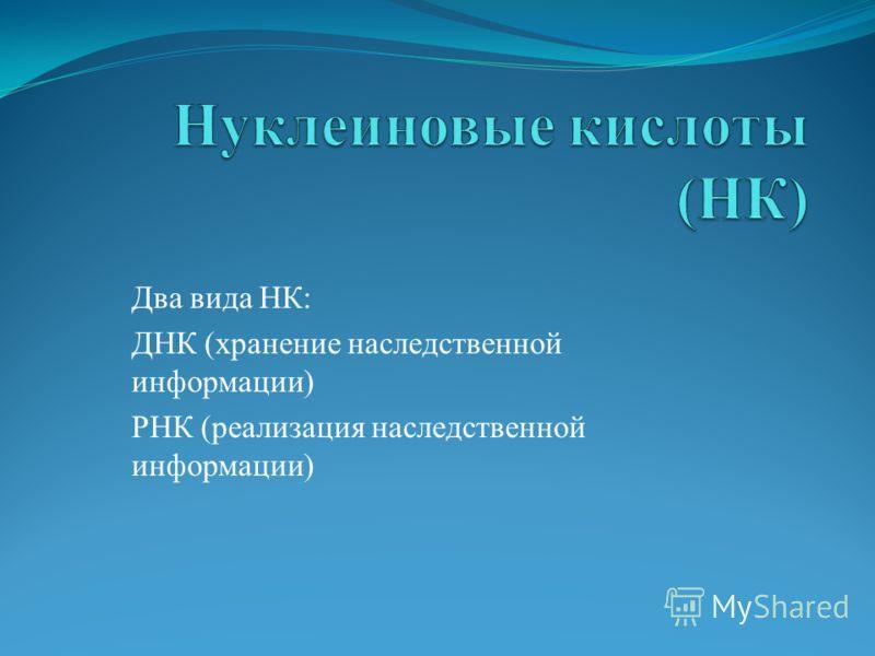 Два вида НК: ДНК (хранение наследственной информации) РНК (реализация наследственной информации)