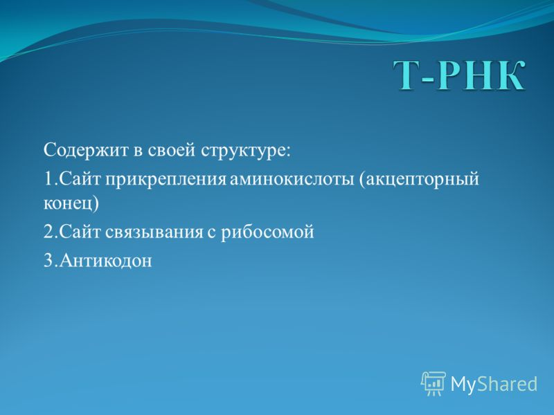 Содержит в своей структуре: 1.Сайт прикрепления аминокислоты (акцепторный конец) 2.Сайт связывания с рибосомой 3.Антикодон
