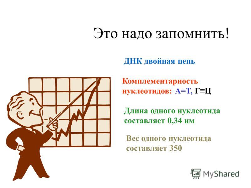 Это надо запомнить! Длина одного нуклеотида составляет 0,34 нм Вес одного нуклеотида составляет 350 Комплементарность нуклеотидов: А=Т, ГЦ ДНК двойная цепь