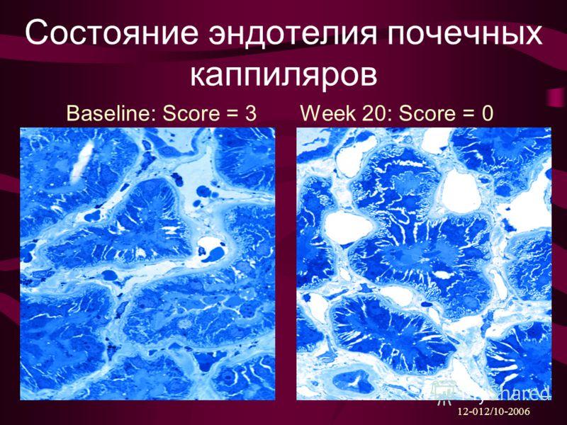 Состояние эндотелия почечных каппиляров Baseline: Score = 3Week 20: Score = 0 12-012/10-2006