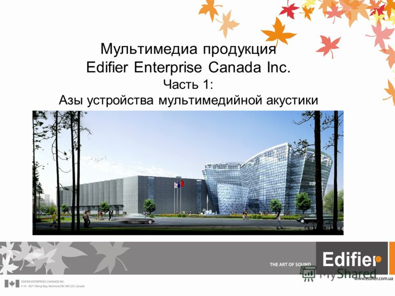 Мультимедиа продукция Edifier Enterprise Canada Inc. Часть 1: Азы устройства мультимедийной акустики