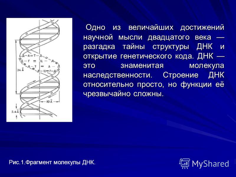 Одно из величайших достижений научной мысли двадцатого века разгадка тайны структуры ДНК и открытие генетического кода. ДНК это знаменитая молекула наследственности. Строение ДНК относительно просто, но функции её чрезвычайно сложны. Одно из величайш